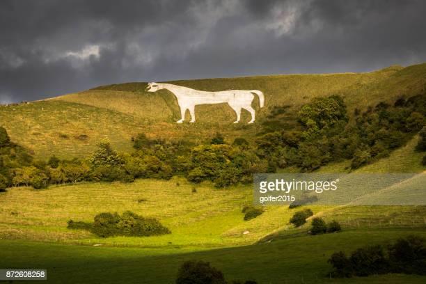 ホワイト ホース - ウィルトシャー - ウィルトシャー州 ストックフォトと画像
