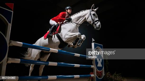 white horse with female rider jumping rail - hurdling horse racing stock pictures, royalty-free photos & images