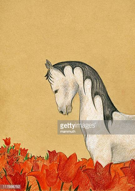 white horse with red tulips