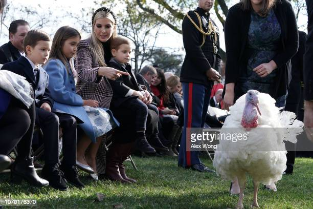 White House adviser and first daughter Ivanka Trump her children Arabella Kushner Joseph Kushner and Theodore Kushner attend a turkey pardoning event...