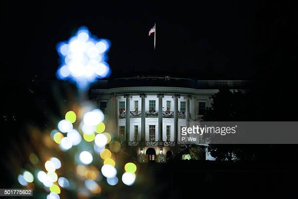 White House Christmas Tree 2015
