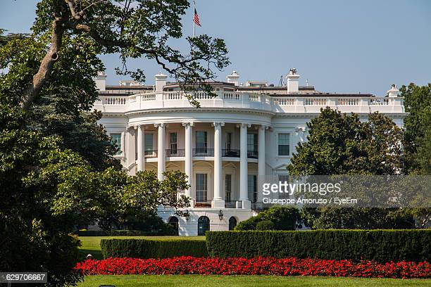 white house in front of lawn against sky - la maison blanche photos et images de collection