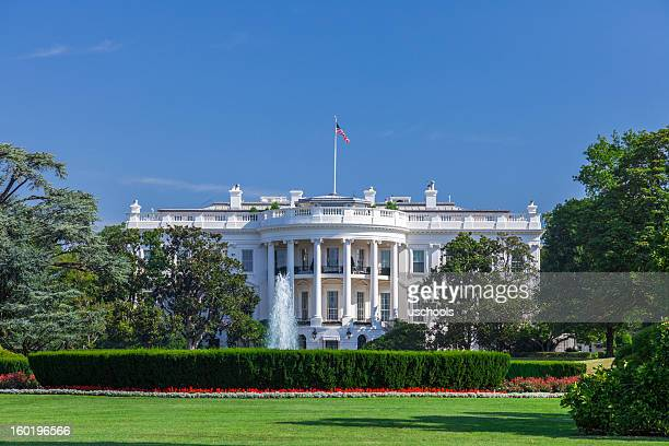 white house on a clear sky - us president stock pictures, royalty-free photos & images