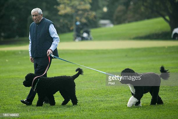 White House staffer walks Bo and Sunny the Obama family dogs on the South Lawn of the White House on October 24 in Washington DC Sunny joined the...