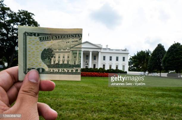 white house washington - us president stock pictures, royalty-free photos & images
