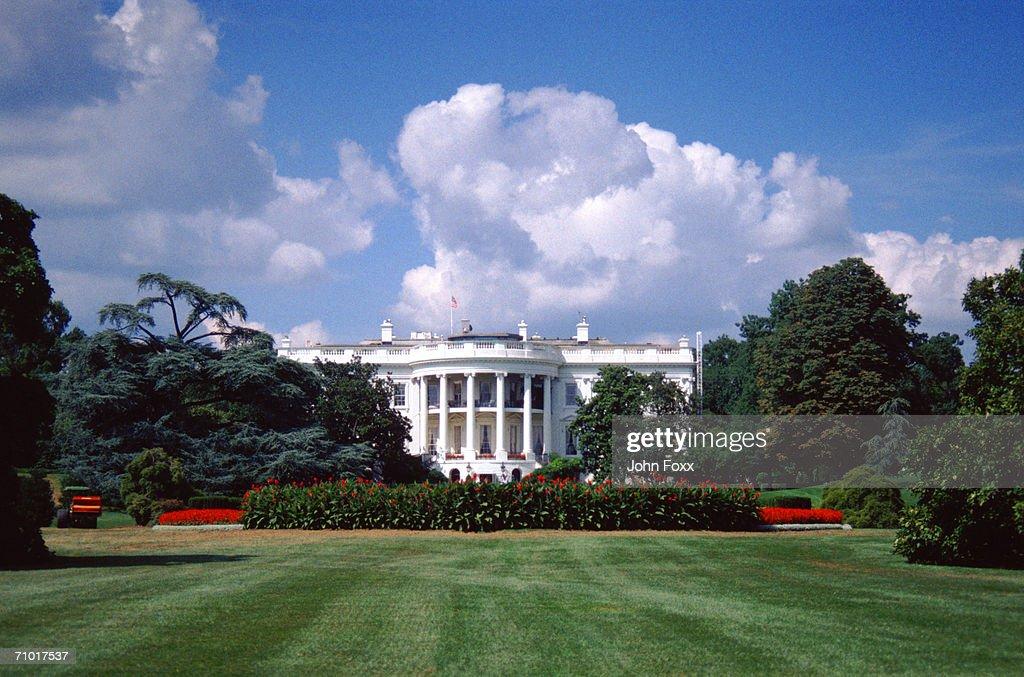 White House, Washington : Stock Photo