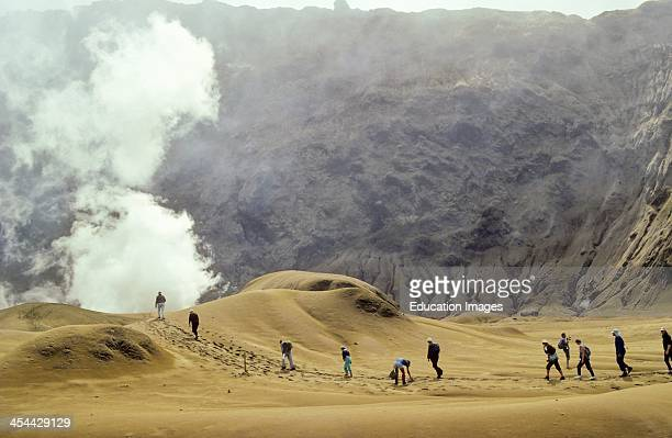 White Island Whakaari crater People walking inside crater new layer of ash Active vents and fumaroles emit steam and toxic gases of sulphur dioxide...