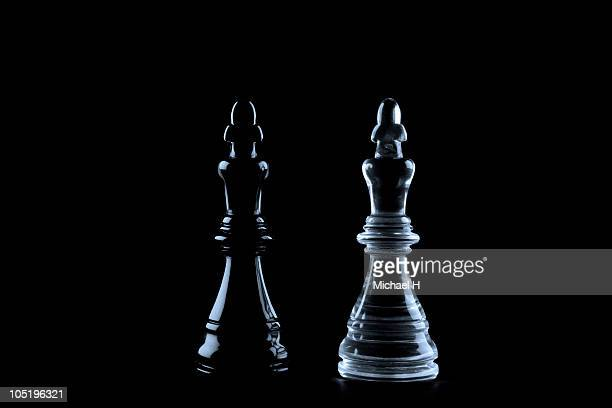 White king and black king deflecting are chess