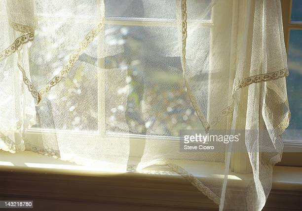 White lace window curtains over a window