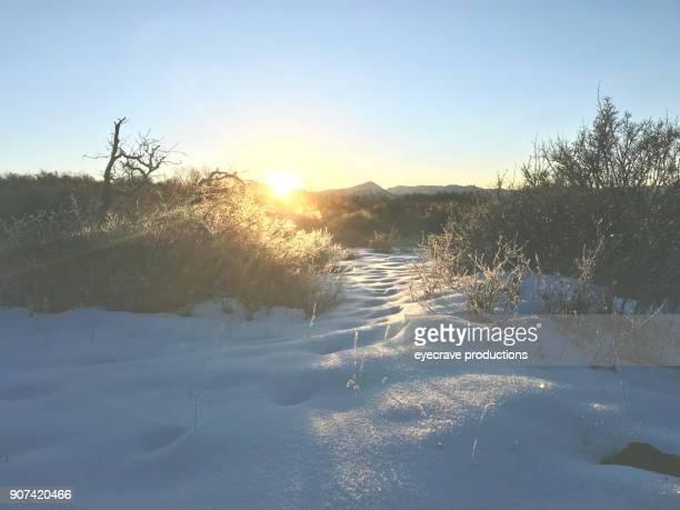 White Landscapes - High Altitude Western Colorado Winter Snowfall Mountain