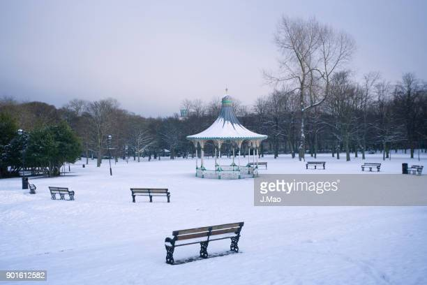 white landscapes in newcastle 2 - st. james' park newcastle upon tyne stock pictures, royalty-free photos & images