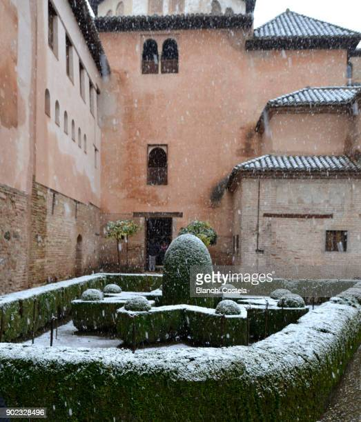 White Landscapes in the Alhambra Castle