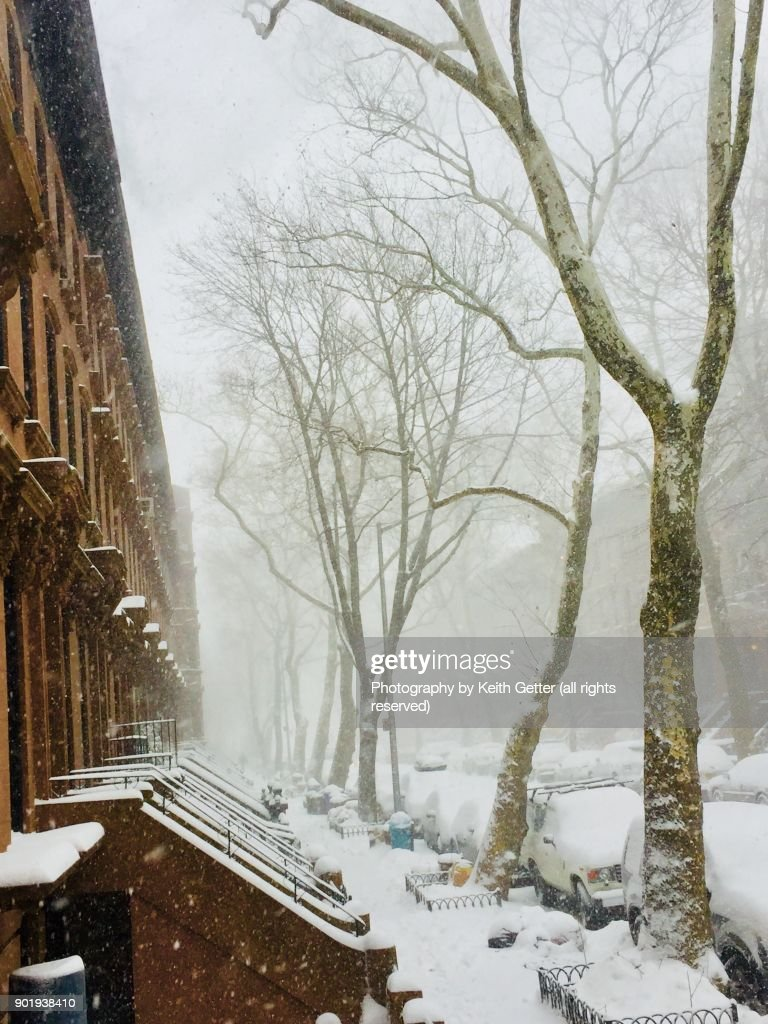White Landscapes : Stock Photo