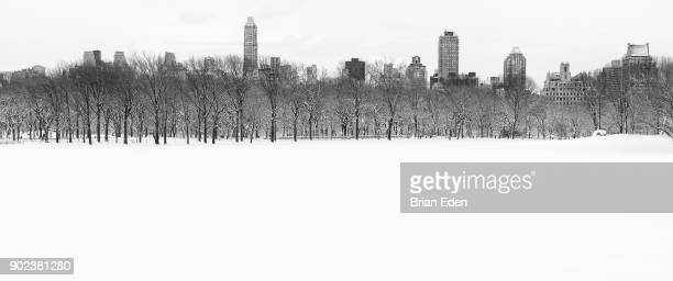 White Landscapes