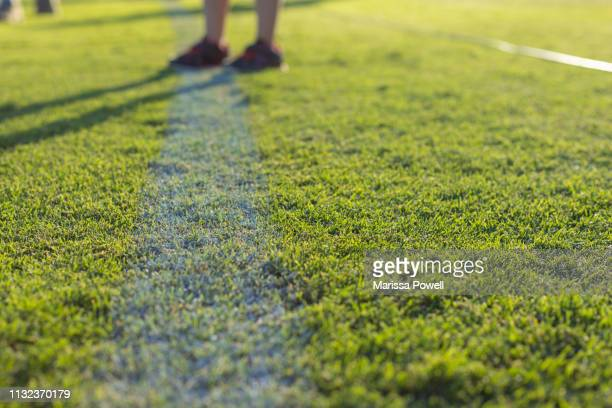 white line in the afternoon sun - afl stock pictures, royalty-free photos & images