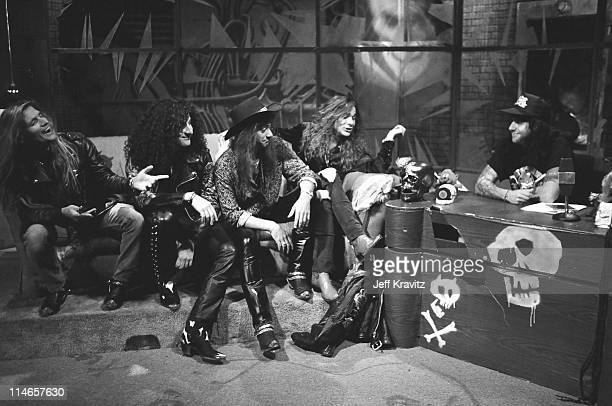 white lion band stock photos and pictures getty images