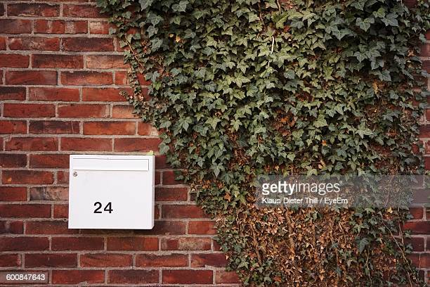 White Metallic Mailbox With Number By Ivy On Brick Wall