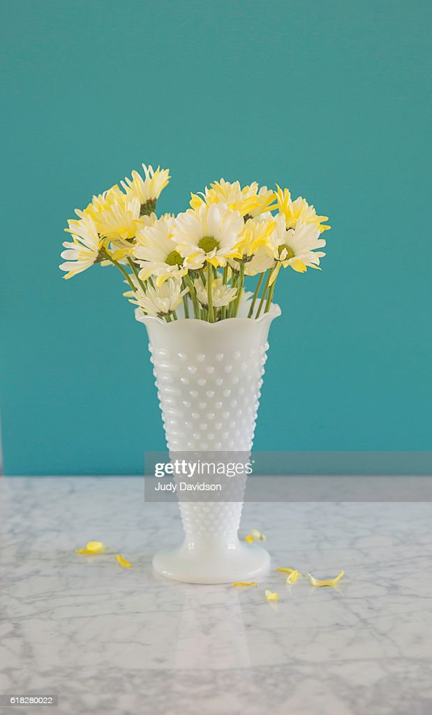 White Milkglass Hobnail Vase With Daisies On An Aqua Background