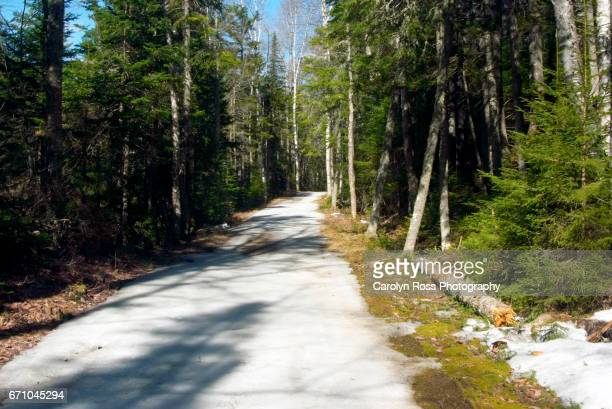 white mountain national forest - carolyn ross stock pictures, royalty-free photos & images