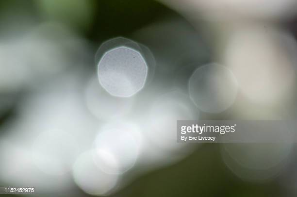 white nine-sided bokeh - focus on foreground stock pictures, royalty-free photos & images