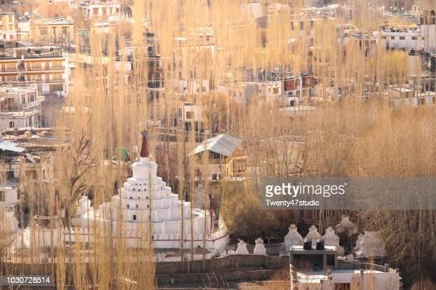 White pagoda in Leh city
