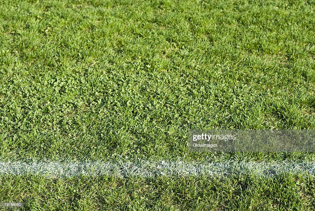 White painted line on a football pitch : Foto de stock