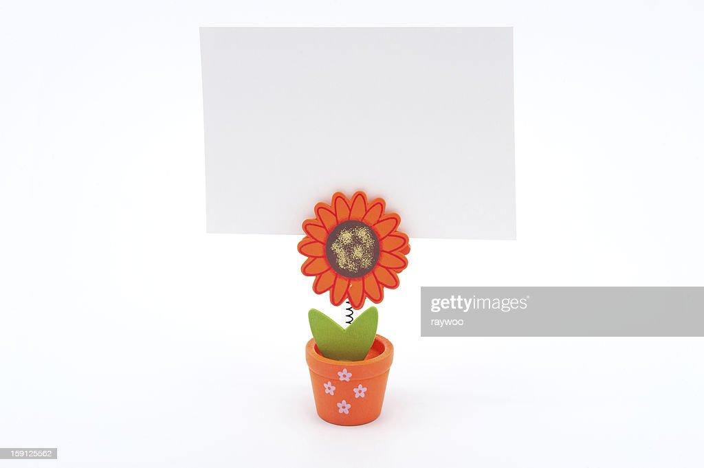 Weissbuch Flower Pot Stock Foto Getty Images