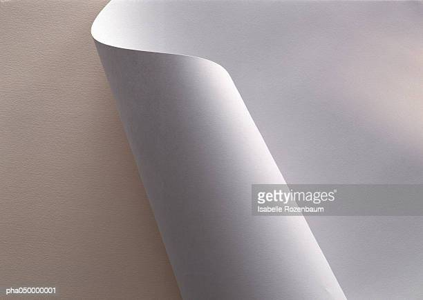 white paper, partially rolled up, close-up - rolled up stock pictures, royalty-free photos & images