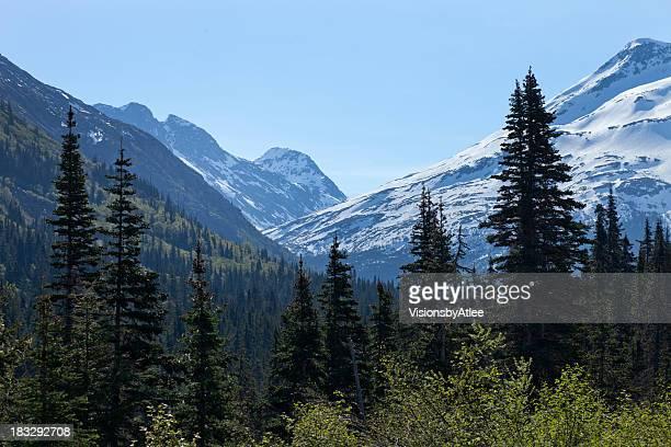 White Pass Mountains Skagway Alaska