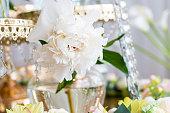 white peony flower close up glass