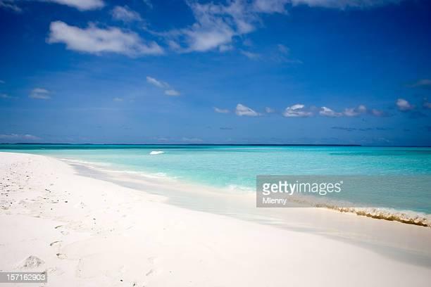 ホワイトに完璧なビーチ