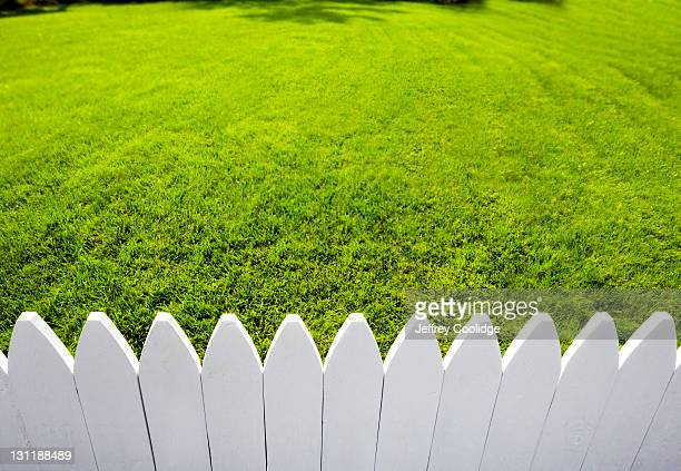 White Picket Fence and Green Grass