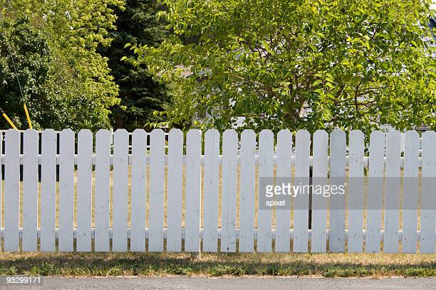 White picket fence and trees