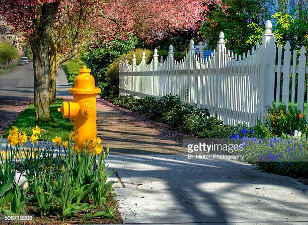 white picket fence garden - bill hinton stock pictures, royalty-free photos & images