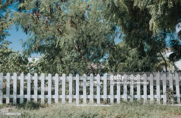 white picket fence - 柵 ストックフォトと画像