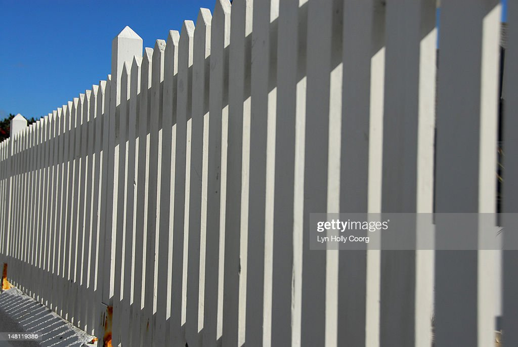A white picket fence : Stock Photo
