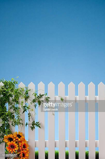 White Picket Fence With Vines And Flowers