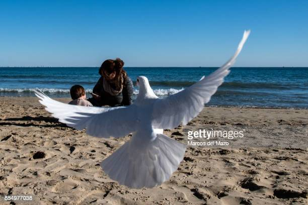 A white pigeon flies over El Postiguet beach on a sunny day while a mother and her daughter play in the sand
