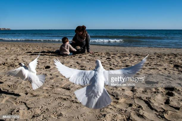 White pigeons fly over El Postiguet beach on a sunny day while a mother and her daughter play in the sand