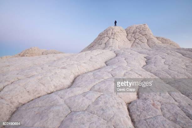 white pocket, arizona, usa - vermilion cliffs stock pictures, royalty-free photos & images