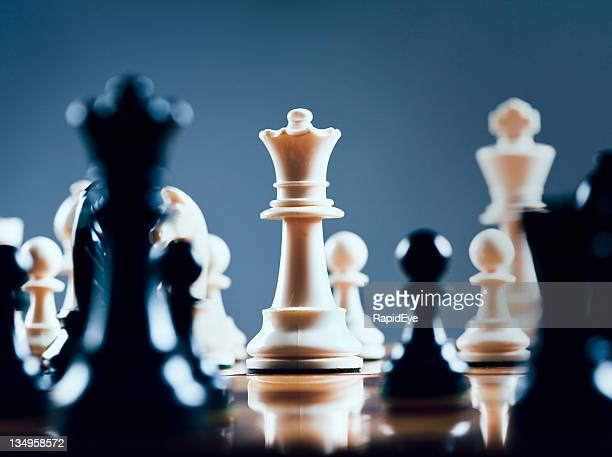 white queen rules the board - chess stock pictures, royalty-free photos & images