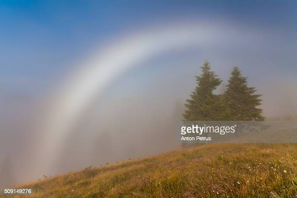 white (foggy) rainbow in the mountains - anton petrus stock pictures, royalty-free photos & images