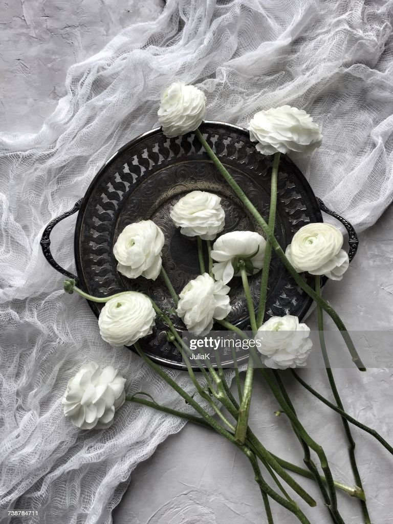 White Ranunculus Flowers On A Pewter Dish And Muslin Stock Photo