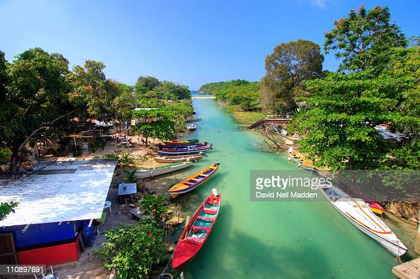 white river, jamaica - jamaica stock pictures, royalty-free photos & images