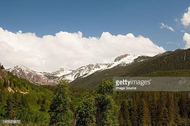 white river national forest, colorado, usa - white river national forest stock photos and pictures