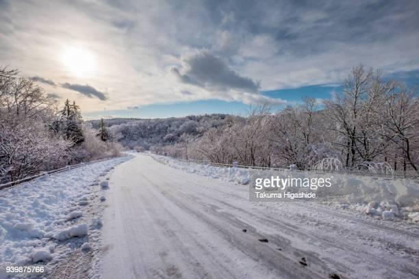 white road - 道 ストックフォトと画像