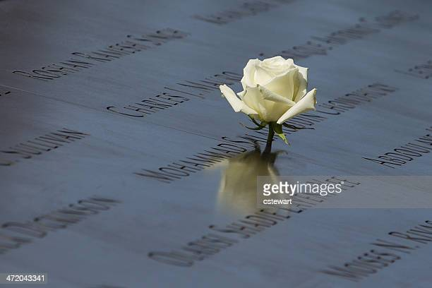 White Rose - 9/11 Memorial, New York City