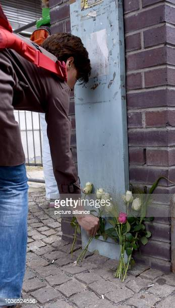 A white rose is placed in front of a building of the Paula Fuerst comprehensive school in BerlinGermany 15 July 2016 Two pupils and a teacher of the...