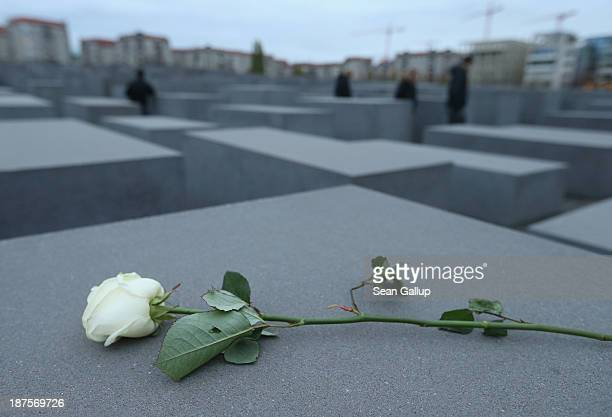 A white rose lies on one of the 2711 stellae at the Memorial to the Murdered Jews of Europe also called the Holocaust Memorial on the 75th...
