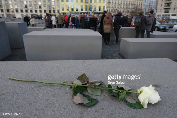 A white rose lies on one of the hundreds of stellae at the Memorial to the Murdered Jews of Europe also called the Holocaust Memorial during a visit...